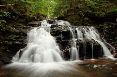 Brookside Trail