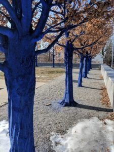 Blue Trees at the Currier Museum