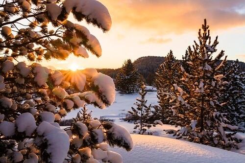 Beautiful outdoor winter scene