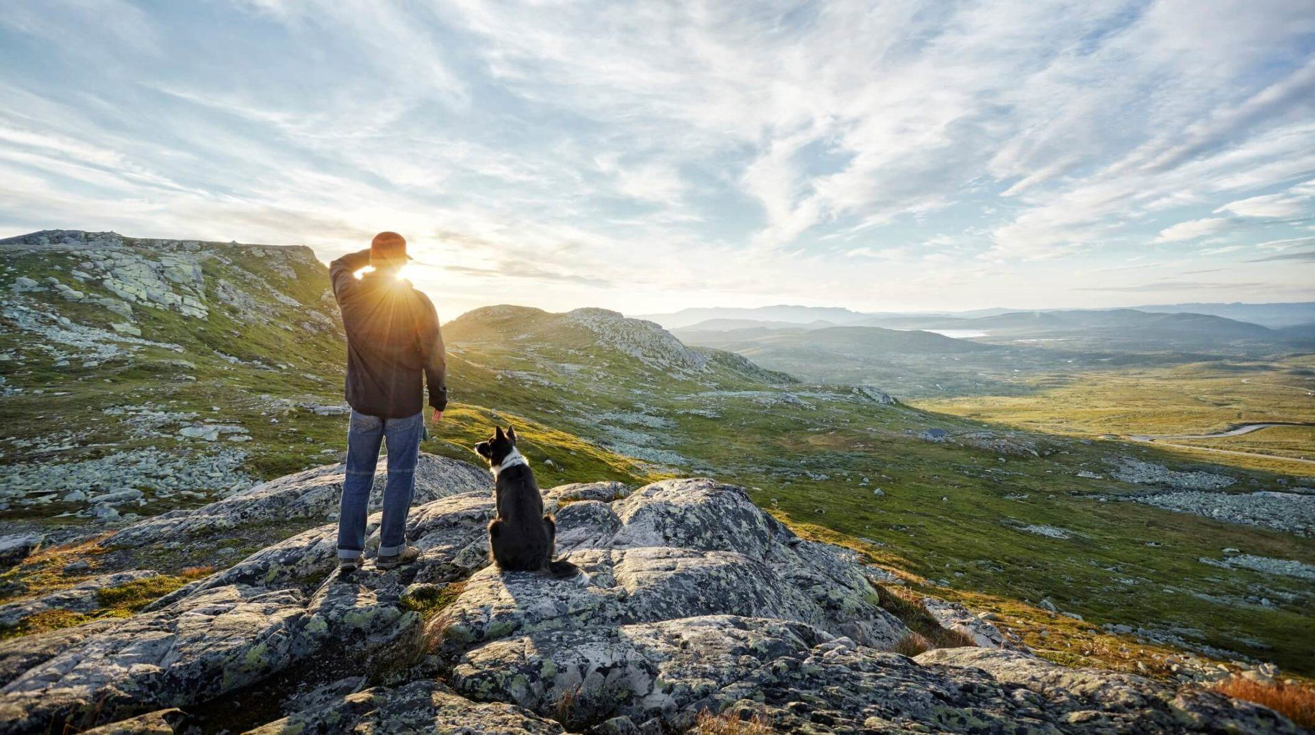Man and dog watching sunrise over hills